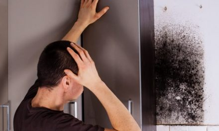 How mold makes people sick