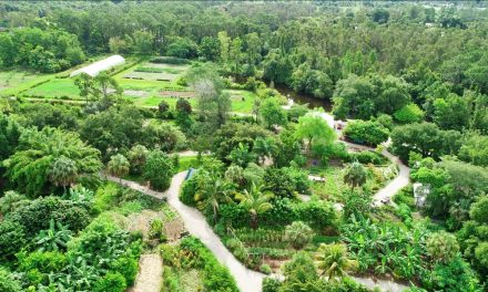 A fascinating warm climate farm