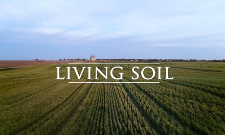 """""""Living Soil"""""""
